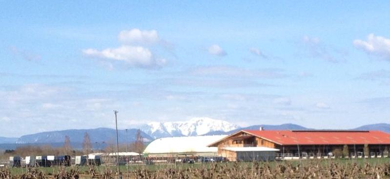 Biolandwirtschaft ERIDIAN mit Pferdehof am Fusse der Alpen